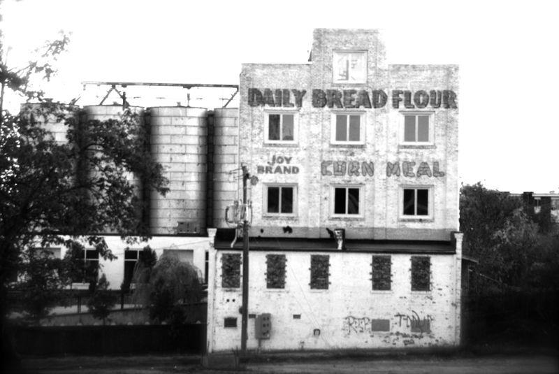 Daily_Bread_Flour