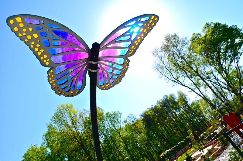 Gateway Butterflies
