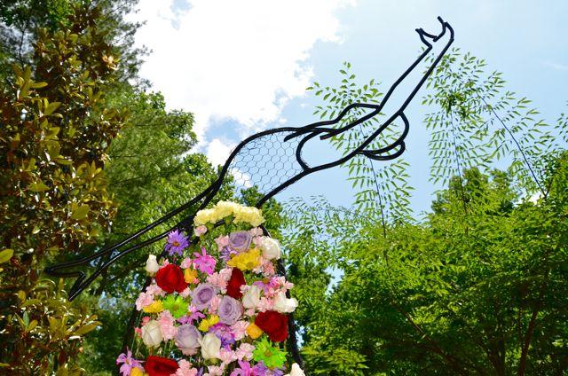 Camberly's Garden