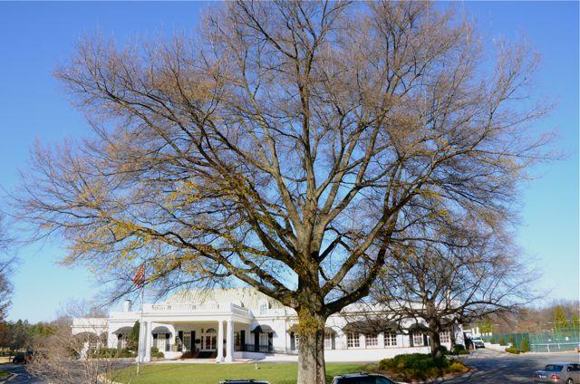 Greensboro Country Club
