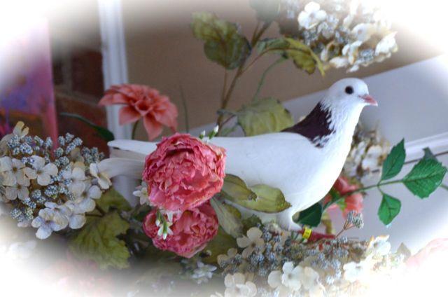 Pigeon II