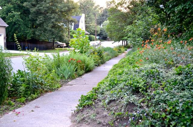U Urban Horticulture