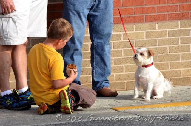 Boy&Dog-1