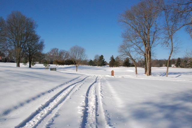 Snow Day - 1