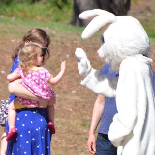 Bunny - 1