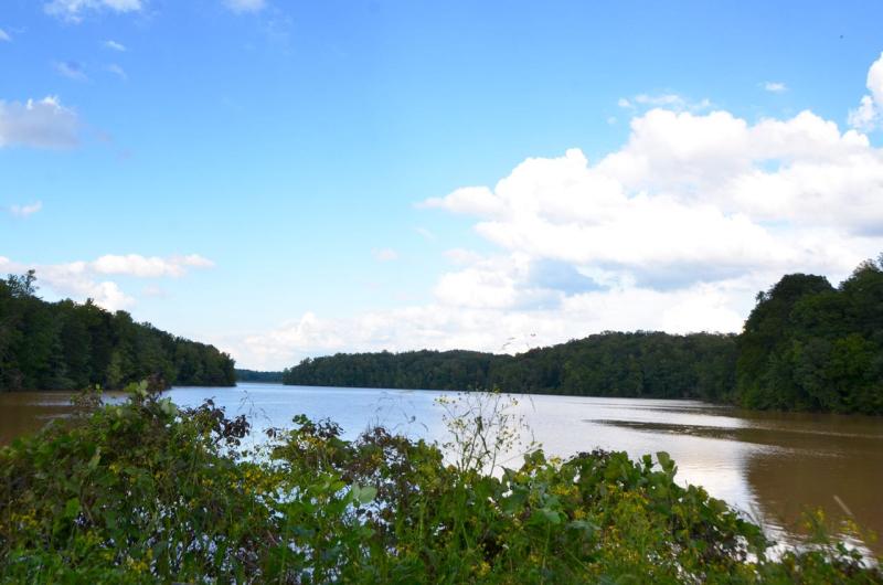 Lake Higgins - 1
