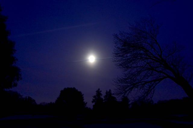 Hunters Moon - 1