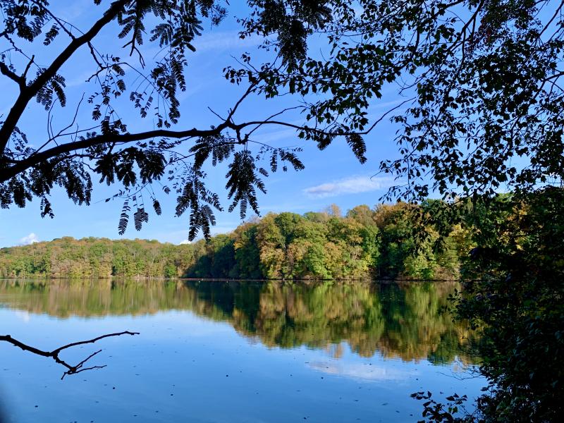 Lake Higgins