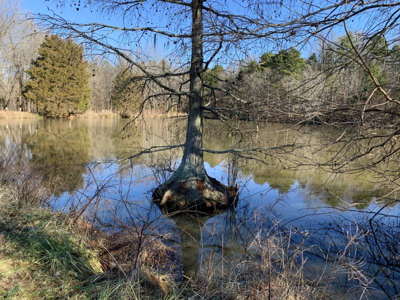 Lake GC